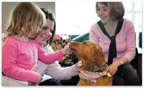 images  Pet Therapy Dog 2