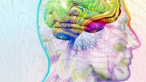 _71213886_m2600424-synaesthesia,_computer_artwork-spl