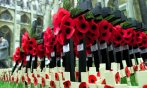 photo 2 Remembrance Day UK