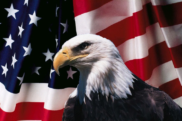9/11, Twenty Years, A Celebration Of So ManyPeople